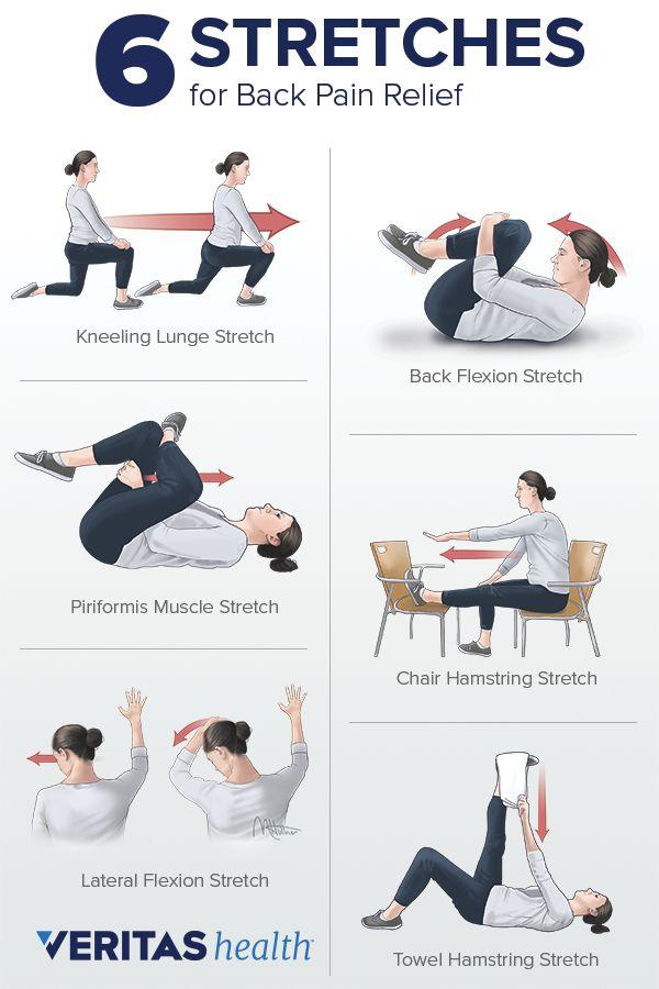 Sainato Chiropractor Port Orange | Chiropractic